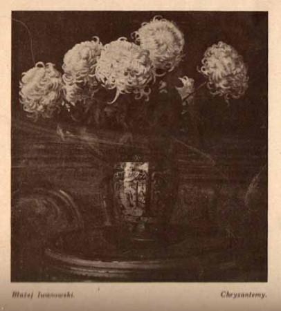 Iwanowski Błażej, Chryzantemy, s.29
