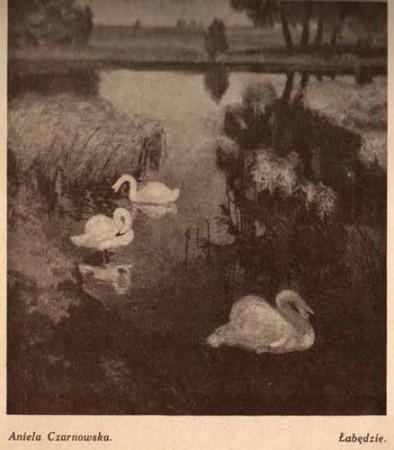 Czarnowska Aniela, Łabędzie, s,29