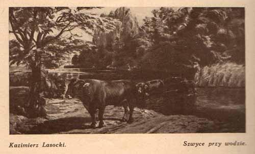 Lasocki kazimierz, Szwyce, s.29
