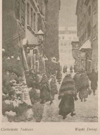 Cieślewski tadeusz Wąski Dunaj, s.26