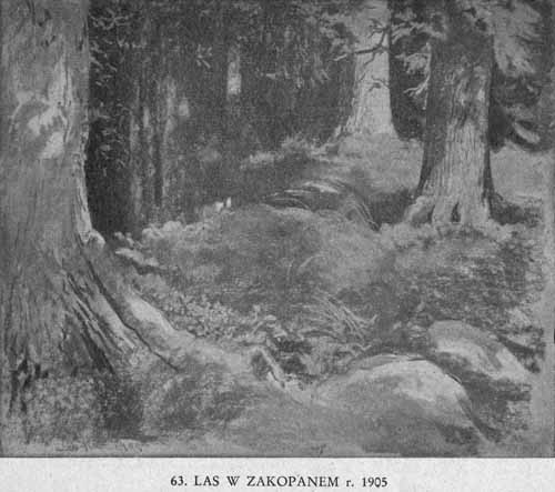 Wyczółkowski Leon, Las w Zakopanem
