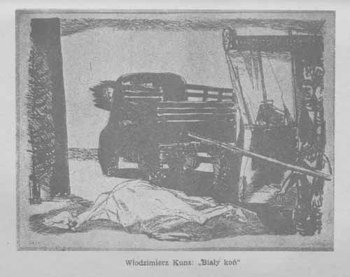 Kunz Włodzimierz, Biały koń, s.55