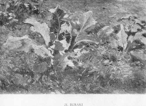 Wyczółkowski Leon, Buraki