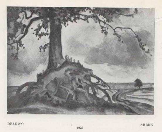 Kazimierz Sichulski Drzewo